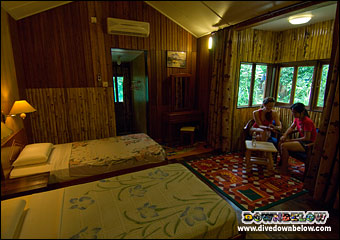 Clean, comfortable Standard Plus accommodation in Kinabatangan area
