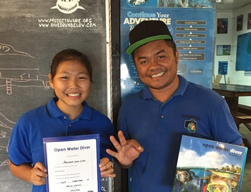 Work Experience to PADI Open Water!