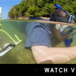 http://joannet1.sg-host.com/about-downbelow/video-collection/video-university-marine-biology-field-trip-downbelow-marine-wildlife-borneo/